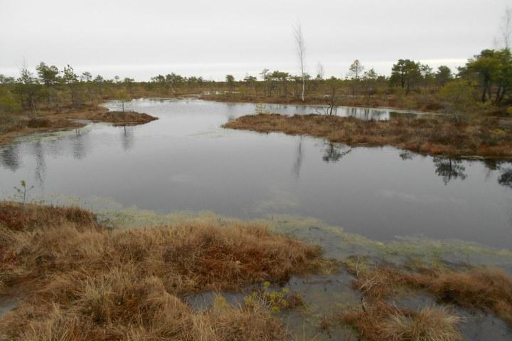 Fotoalbum Letland (platteland)