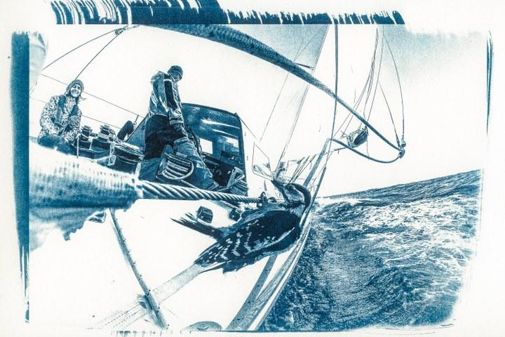 'Sea-men-ship, regattavaart versus traditionele zeilvaart'
